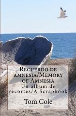 Recuerdo de amnesia/Memory of Amnesia