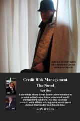 Credit Risk Management - The Novel