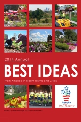 Best Ideas Annual 2014