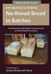 Introduction to Making No-Knead Bread in Batches (For Restaurants, Bake Sales, Family Reunions and Other Special Occasions) (B&W Version)