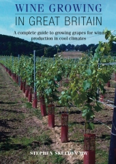 Wine Growing in Great Britain