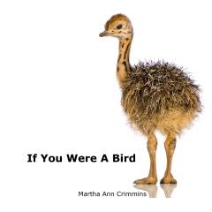 If You Were A Bird