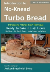 Introduction to No-Knead Turbo Bread (Ready to Bake in 2-1/2 Hours… No Mixer… No Dutch Oven… Just a Spoon and a Bowl) (B&W Version)