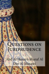 Questions on Juriprudence