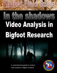 Bigfoot Field Guide - In The Shadows - Video Analysis in Bigfoot Research