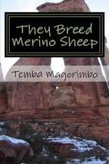 They Breed Merino Sheep