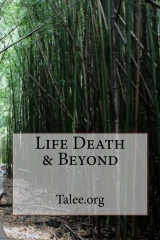 Life Death & Beyond