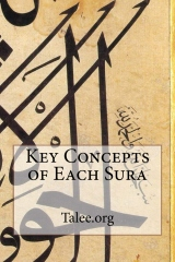 Key Concepts of Each Sura