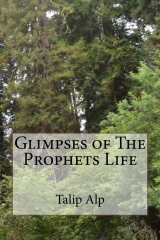Glimpses of The Prophets Life