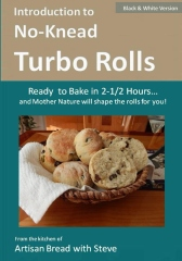 Introduction to No-Knead Turbo Rolls (Ready to Bake in 2-1/2 Hours… and Mother Nature will shape the rolls for you!) (B&W Version)