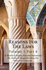 Reasons For The Laws
