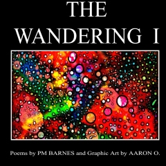 The Wandering I