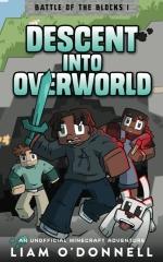 Descent into Overworld
