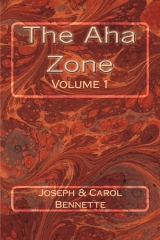 The Aha Zone