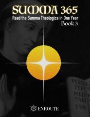Summa 365, Book 3