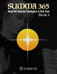 Summa 365, Book 4