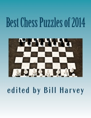 Best Chess Puzzles of 2014