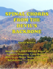 Spinal Chords From The Devil's Backbone