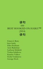Best 100 Hooked On Haiku of 2014