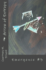 Arrow of Entropy