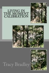 Living In The Moment Calibration