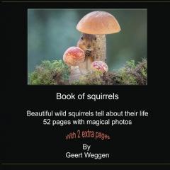 Book of squirrels