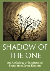 Shadow of The One