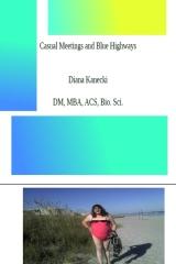 Casual Meeting & Blue Highways