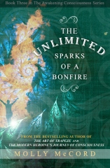 The Unlimited Sparks of a Bonfire