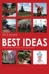 Best Ideas Annual 2015