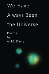 We Have Always Been The Universe