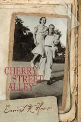 Cherry Street Alley