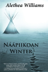 Naapiikoan Winter