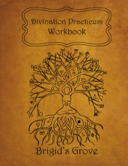 Divination Practicum Workbook