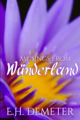 Musings From Wunderland