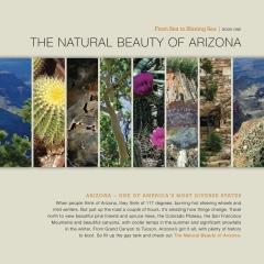 The Natural Beauty of Arizona