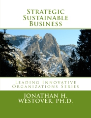 Strategic Sustainable Business