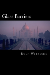 Glass Barriers