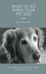What To Do When Your Pet Dies