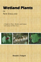 Wetland Plants of New England