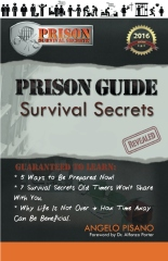 Prison Guide: Survival Secrets Revealed