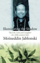 Illuminating the Shadow