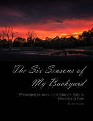 The Six Seasons of My Backyard