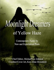 Moonlight Dreamers of Yellow Haze