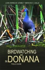 Birdwatching in Donana