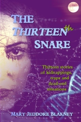 The Thirteenth Snare