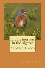 Birding hotspots in the Algarve