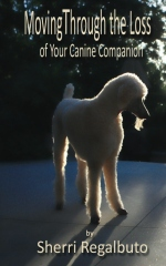 Moving Through the Loss of Your Canine Companion