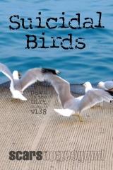 Suicidal Birds