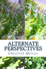 Alternate Perspectives